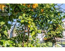 3275 Campion Rd-Property-22817165-Photo-83.jpg