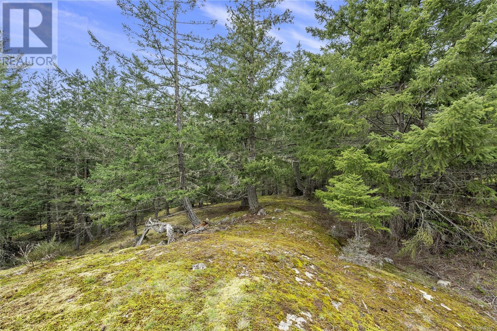 Lot A Armand WaySalt Spring, British Columbia  V8K 2B6 - Photo 11 - 871175