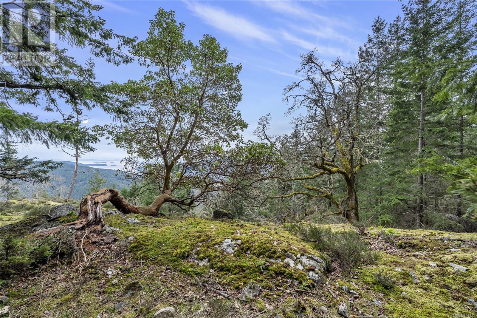 Lot A Armand WaySalt Spring, British Columbia  V8K 2B6 - Photo 18 - 871175