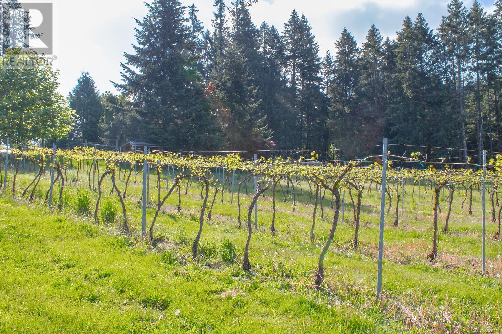1854 Myhrest RdCobble Hill, British Columbia  V0R 1N1 - Photo 3 - 876271