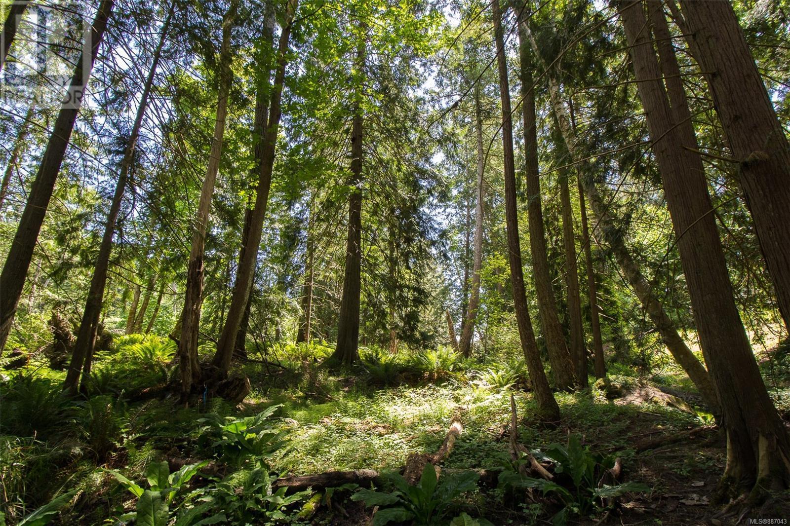 1644 Rugg RdNanaimo, British Columbia  V9X 1N1 - Photo 33 - 887043