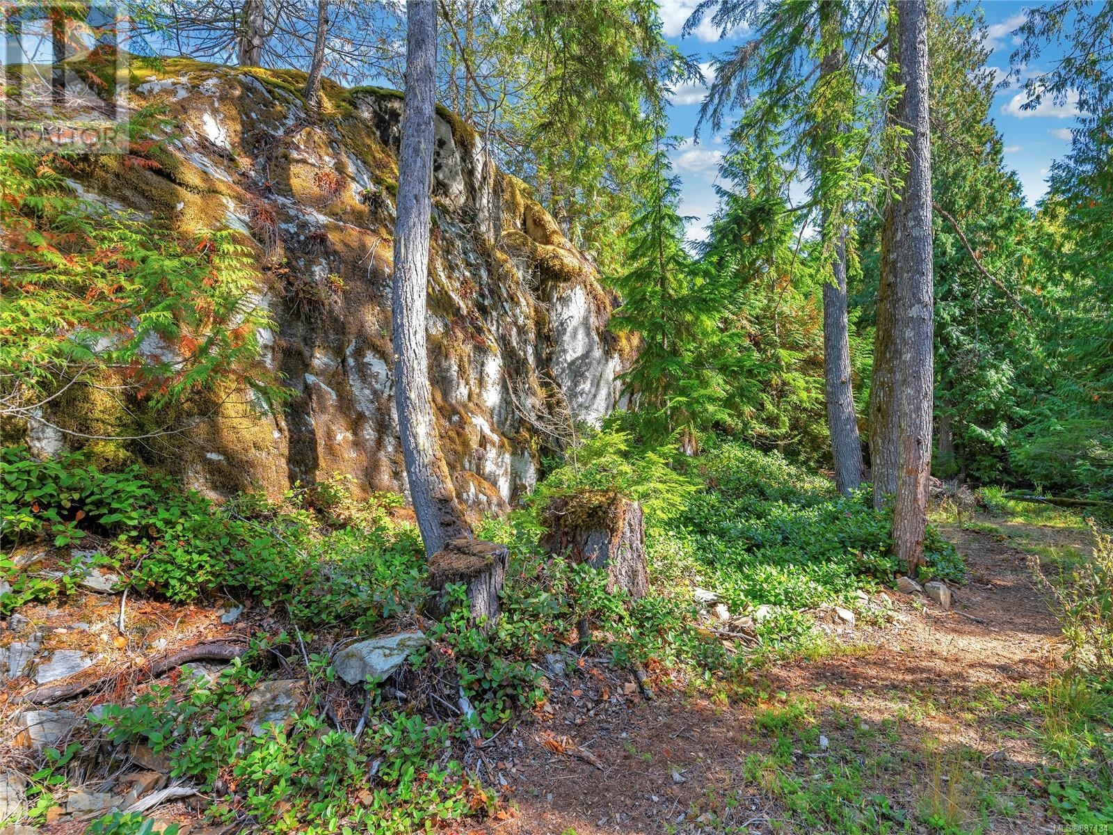 533 Skywater DrSalt Spring, British Columbia  V8K 2W9 - Photo 7 - 887134