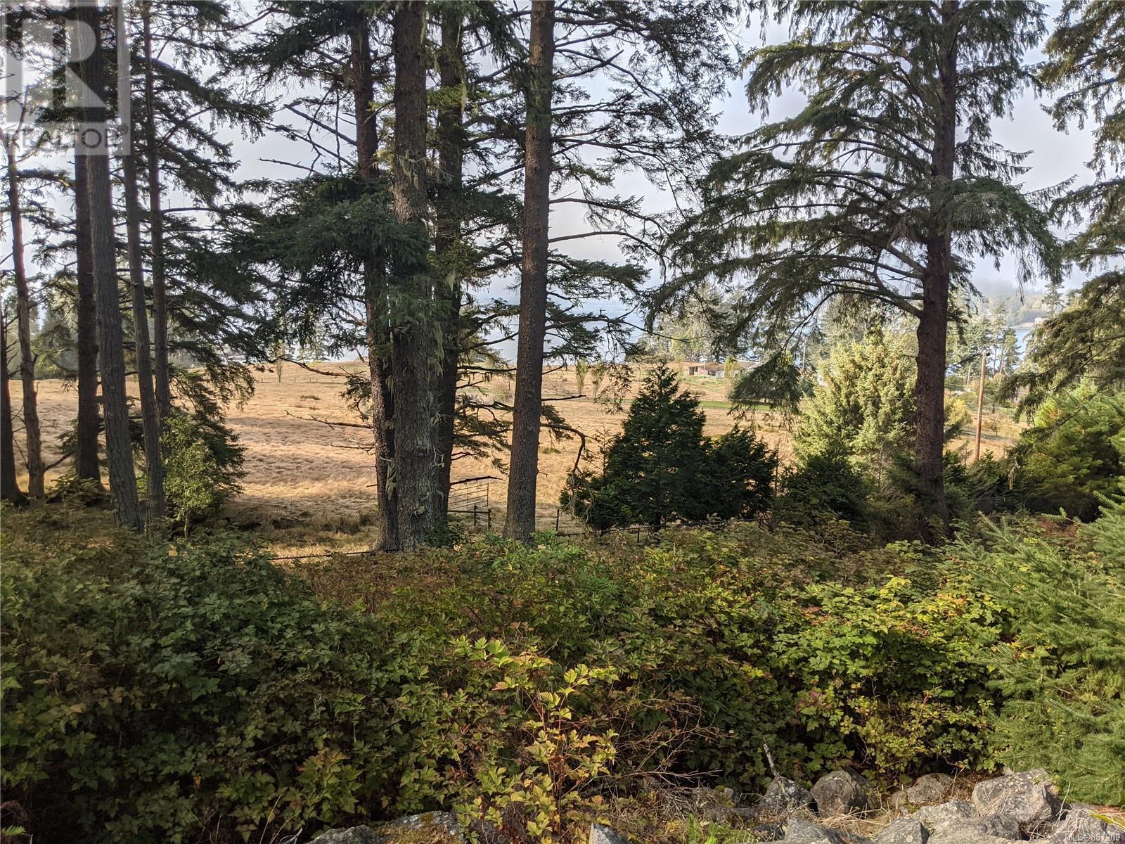 7200 East Sooke RdSooke, British Columbia  V9Z 1A8 - Photo 3 - 887209
